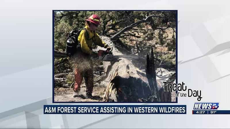 Treat of the Day: A&M Forest service helping fight western wildfires