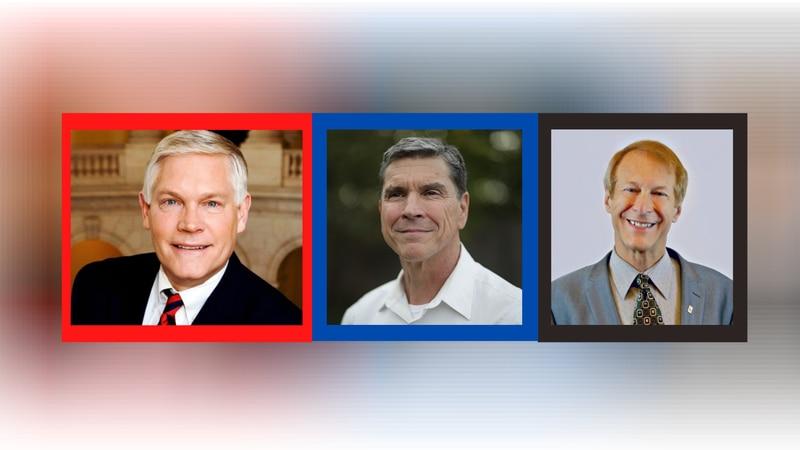 United States Representative District 17 candidates