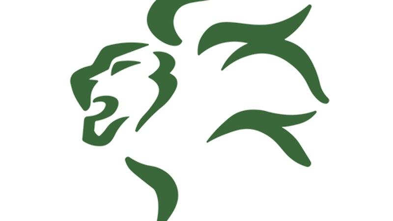Franklin Lions