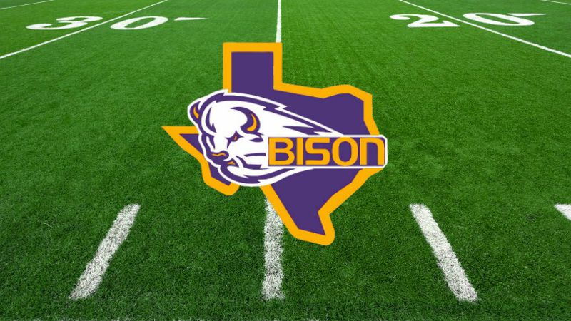 Buffalo Bison football logo