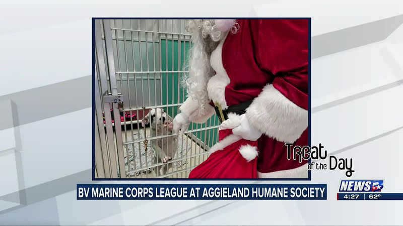 Brazos Valley Marine Corps League visits animal shelter