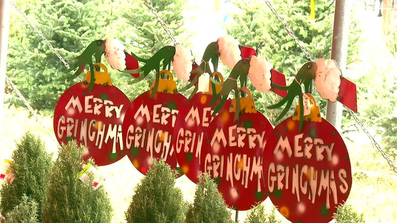 Christmas Trees are in high demand but The Farm Patch is ready to meet the need