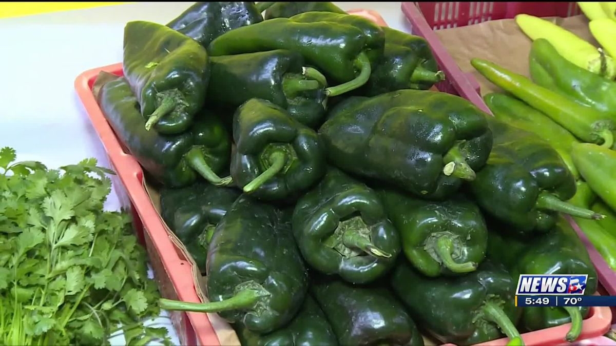 How to select fall produce peppers with Michael Marks Your Produce Man.