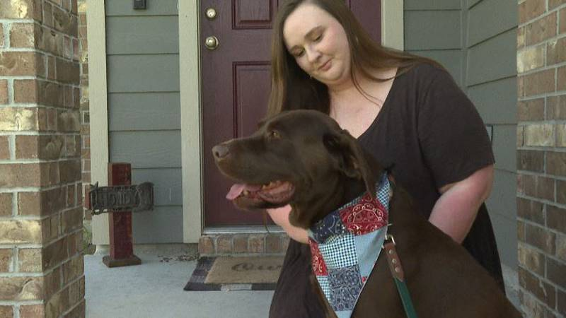 Levi the Labrador, and his owner Alissa Byrd.