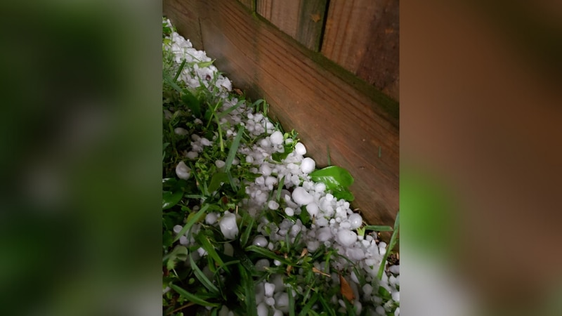Hail pelted Brazos County on April 8.