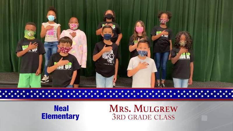 Daily Pledge - Neal Elementary - Mrs. Mulgrew's Class