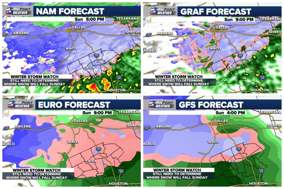 Different model forecasts -- from highest to lowest resolution -- for potential snowfall Sunday