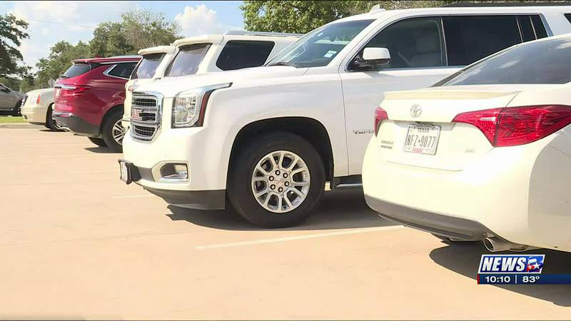 Texas A&M researchers say they can grow food from materials captured from car exhaust