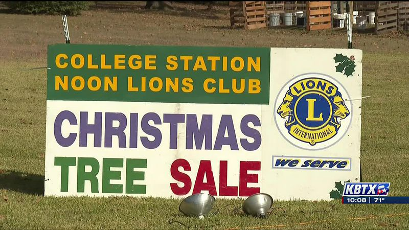 College Station Noon Lions Club Christmas Tree Lot opens on Black Friday