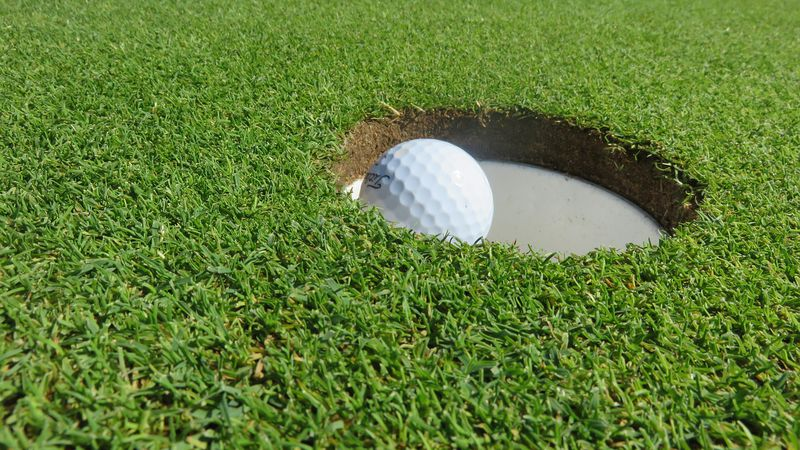 Kraken's Revenge Miniature Golf Course will be located along Highway 6 near University Drive....
