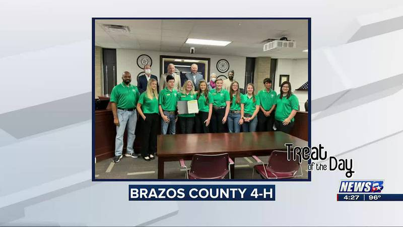 Treat of the Day: Brazos County 4-H proclamation