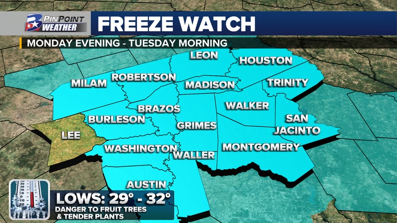 A Freeze Watch has been issued for the Brazos Valley. Impact time: 10pm Monday - 8am Tuesday