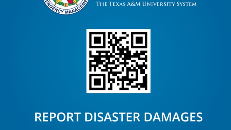 Texas Division of Emergency Management Self Reporting Damage Survey