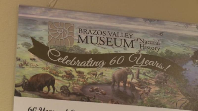 60th Anniversary of BVMNH