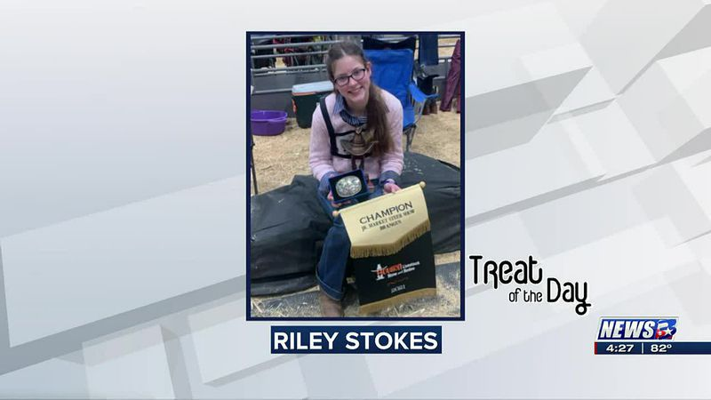 Treat of the Day: Riley Stokes wins at Houston Livestock Show