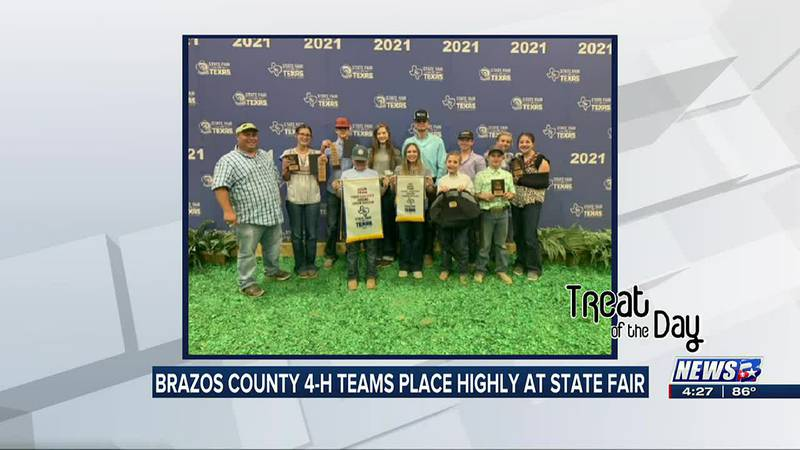 Treat of the Day: Brazos County 4-H livestock judging teams