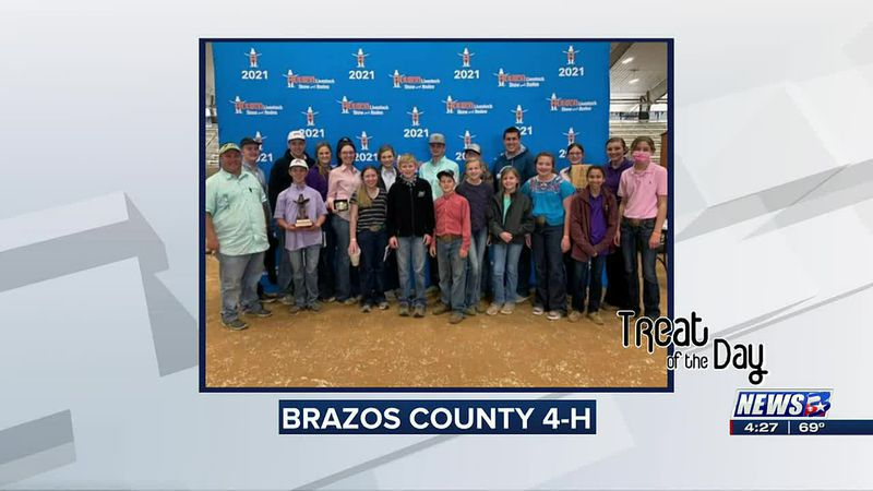 Treat of the Day: Brazos County 4-H club wins at regional livestock show