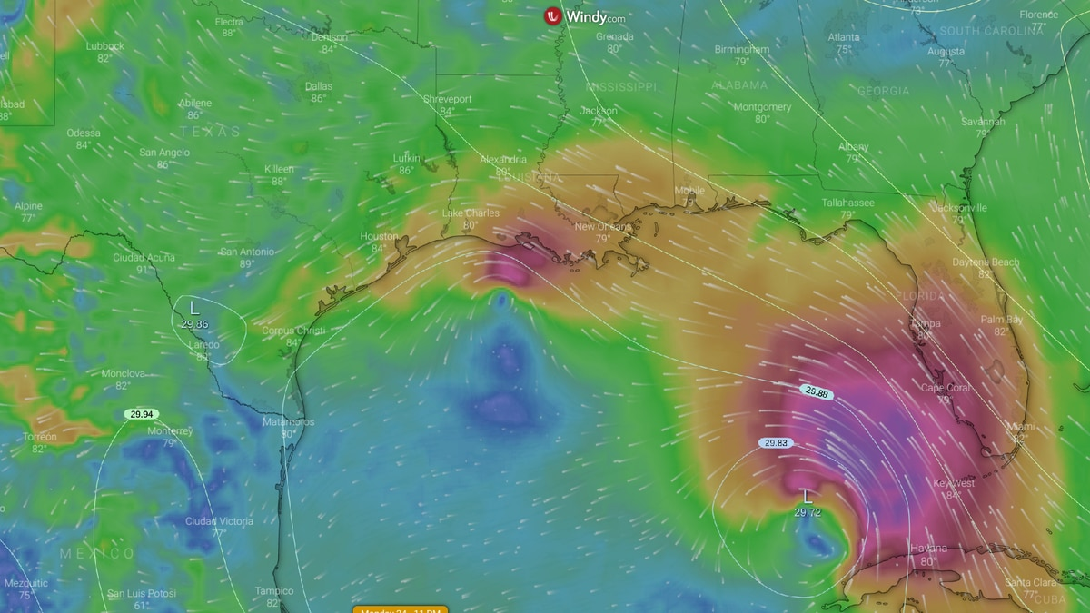 European forecast for Marco and Laura by Monday, August 24th